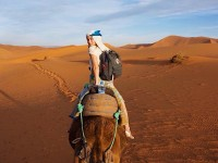 Student on Camel